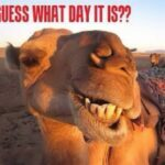 guesswhatday